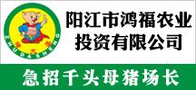 广东省阳江市鸿福农业投资有限公司