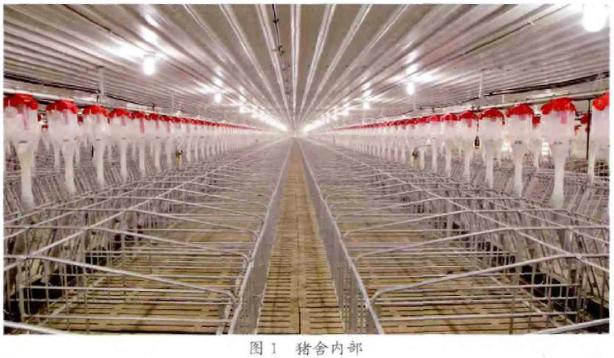 土木变革的现代化建设正悄然走来猪场建筑设计赚钱吗图片