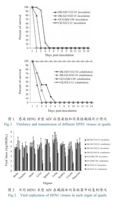 和新城疫病毒血凝抑制(hi)抗体均