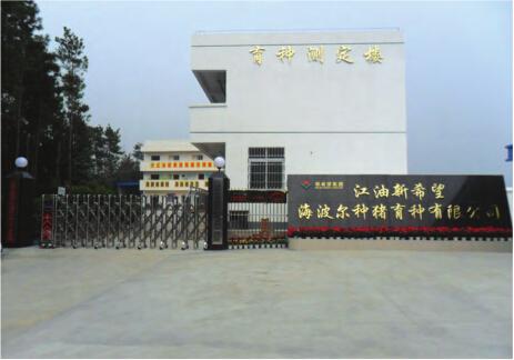 江油建筑模板厂