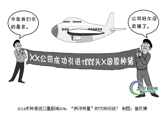 国内种猪企业打广告的模式是:下了飞机拉一条横幅,上面写着从哪个国家