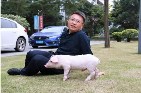 播恩集团营销总监曹剑波:可爱小猪,如若你是天使